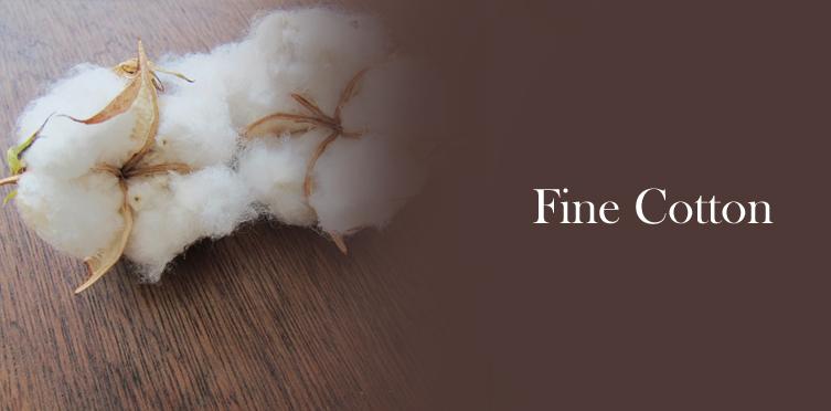Bhuragroup com | Raw cotton exporter in India